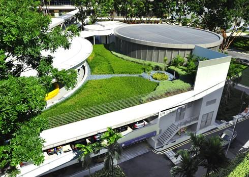 Cách trang trí thảm cỏ nhân tạo đẹp tự nhiên